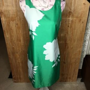 Green & white Banana Republic shift Dress Size 2